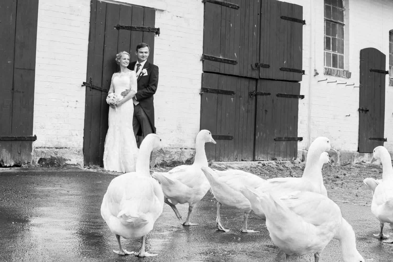 Ja ich will Hochzeitsfotos -021