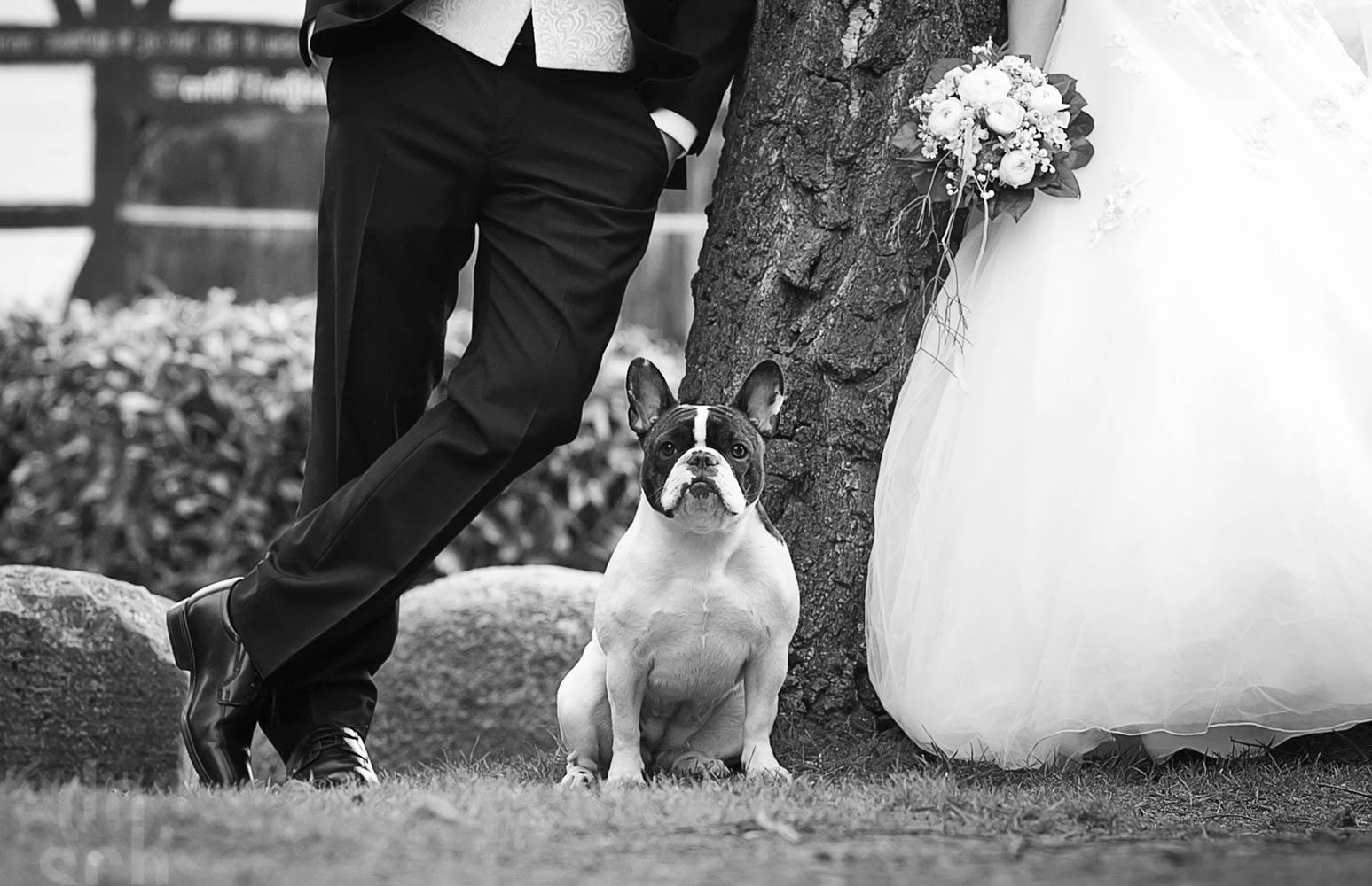 Ja ich will Hochzeitsfotos -059